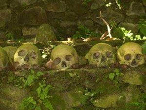 Asal-usul Orang Terunyan di Bali
